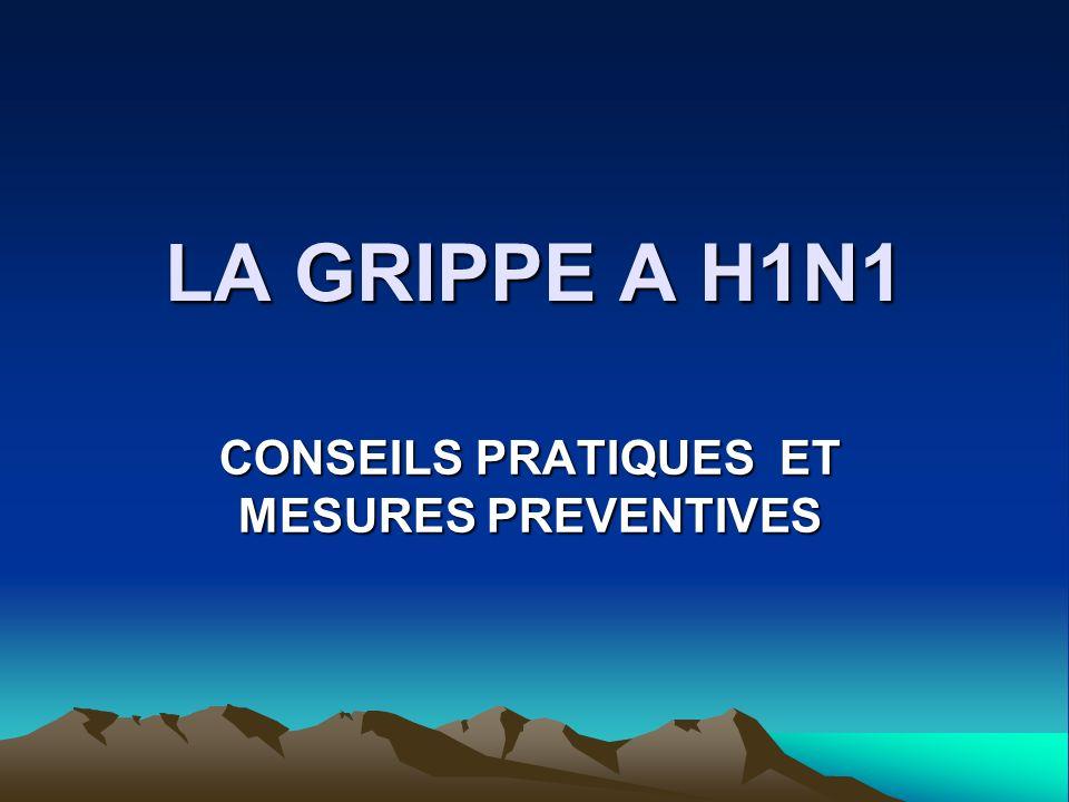LA GRIPPE A H1N1 CONSEILS PRATIQUES ET MESURES PREVENTIVES