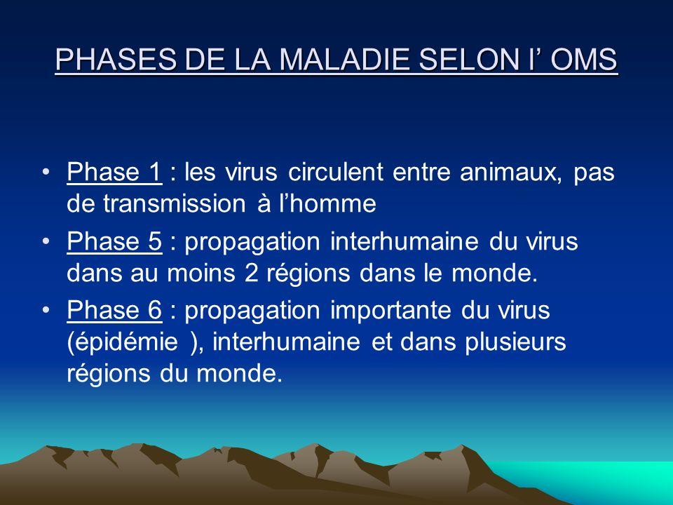 PHASES DE LA MALADIE SELON l OMS Phase 1 : les virus circulent entre animaux, pas de transmission à lhomme Phase 5 : propagation interhumaine du virus