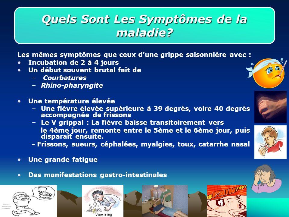 Les mêmes symptômes que ceux dune grippe saisonnière avec : Incubation de 2 à 4 jours Un début souvent brutal fait de – Courbatures –Rhino-pharyngite