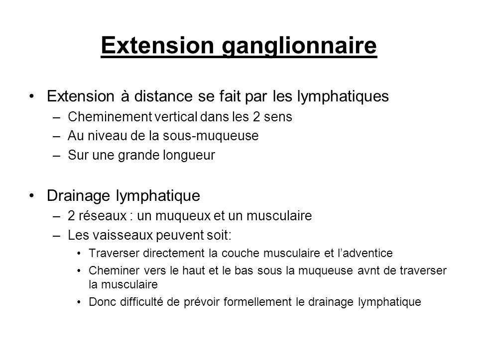 Extension ganglionnaire Extension à distance se fait par les lymphatiques –Cheminement vertical dans les 2 sens –Au niveau de la sous-muqueuse –Sur un
