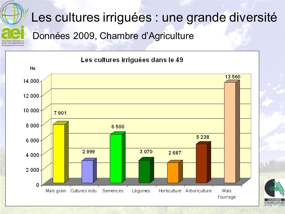 Données 2009, Chambre dAgriculture Les cultures irriguées : une grande diversité