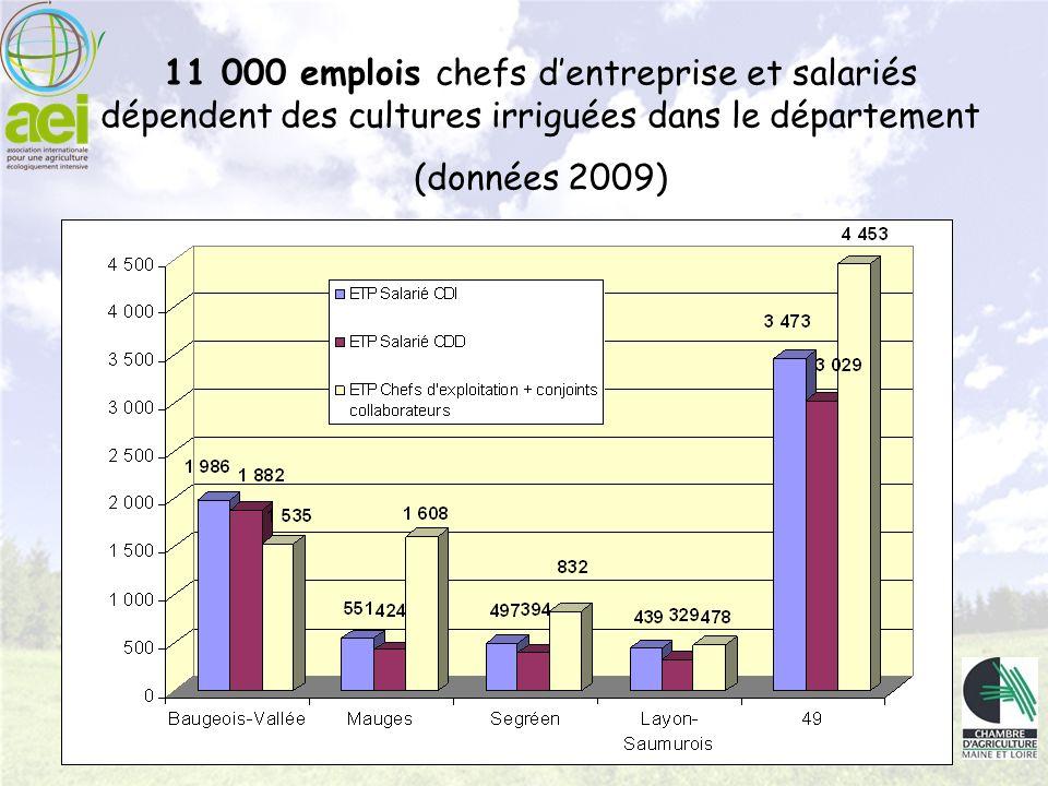 11 000 emplois chefs dentreprise et salariés dépendent des cultures irriguées dans le département (données 2009)