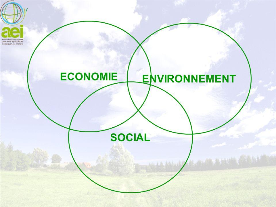 ENVIRONNEMENT SOCIAL ECONOMIE