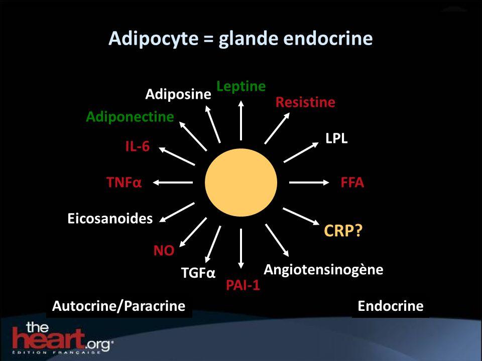 Adipocyte = glande endocrine Autocrine/ParacrineEndocrine Leptine FFATNFα Eicosanoides PAI-1 Adiponectine Adiposine Resistine Angiotensinogène TGFα IL
