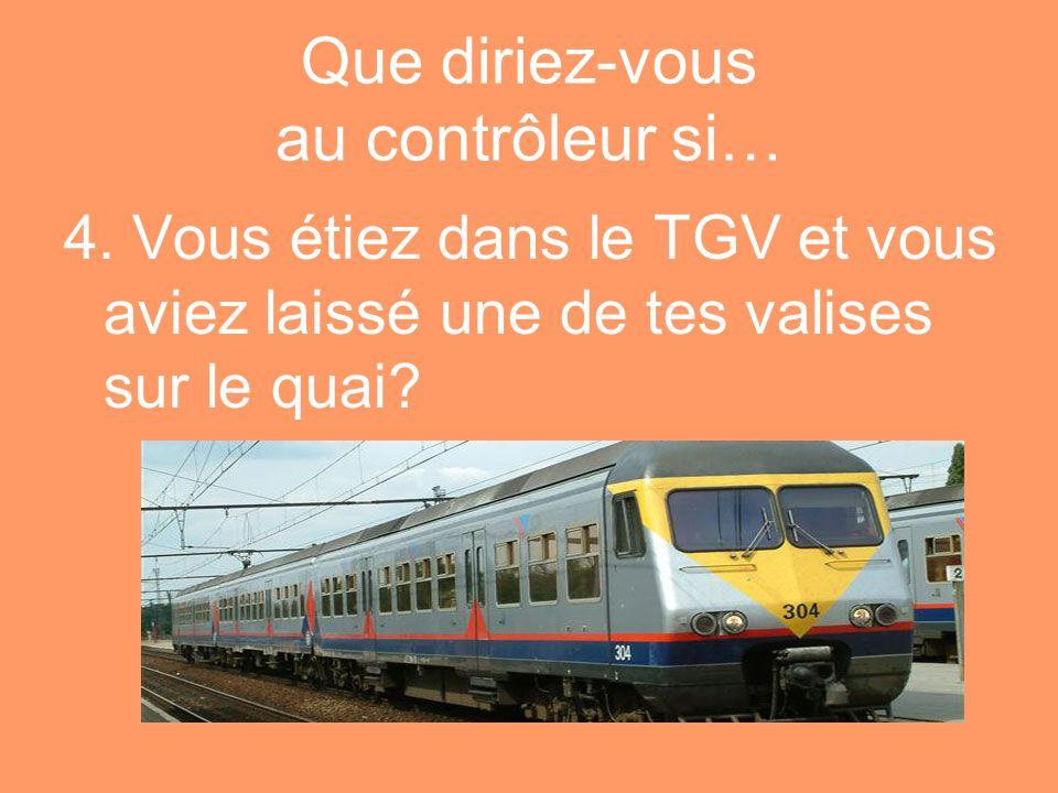 Que diriez-vous au contrôleur si… 4. Vous étiez dans le TGV et vous aviez laissé une de tes valises sur le quai?