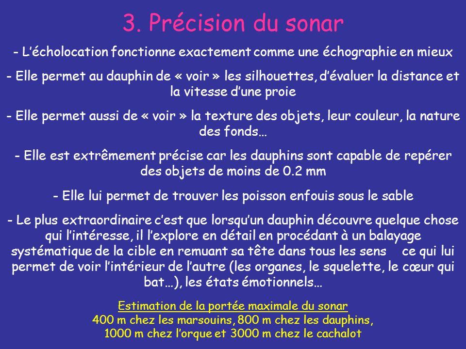 3. Précision du sonar - Lécholocation fonctionne exactement comme une échographie en mieux Estimation de la portée maximale du sonar 400 m chez les ma