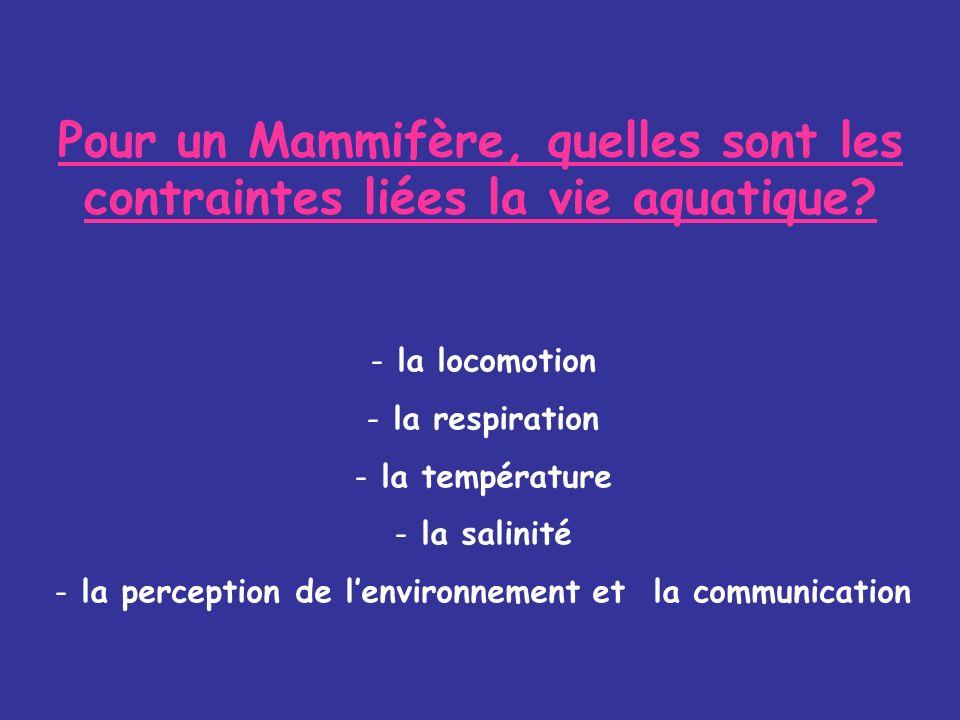 Pour un Mammifère, quelles sont les contraintes liées la vie aquatique.