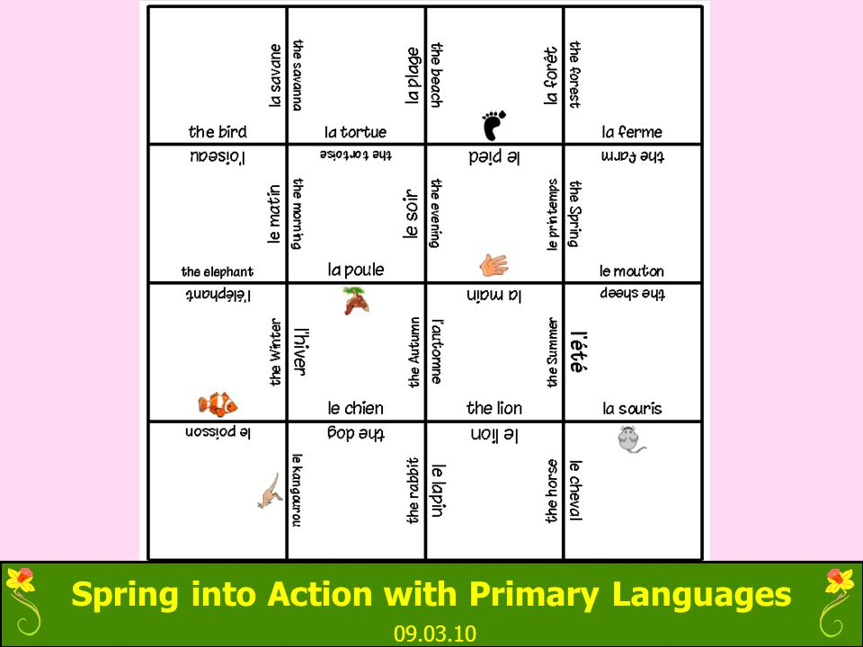 Spring into Action with Primary Languages