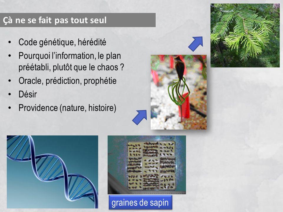 Code génétique, hérédité Pourquoi linformation, le planpréétabli, plutôt que le chaos ? Oracle, prédiction, prophétie Désir Providence (nature, histoi