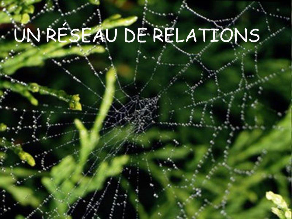 11 UN RÉSEAU DE RELATIONS