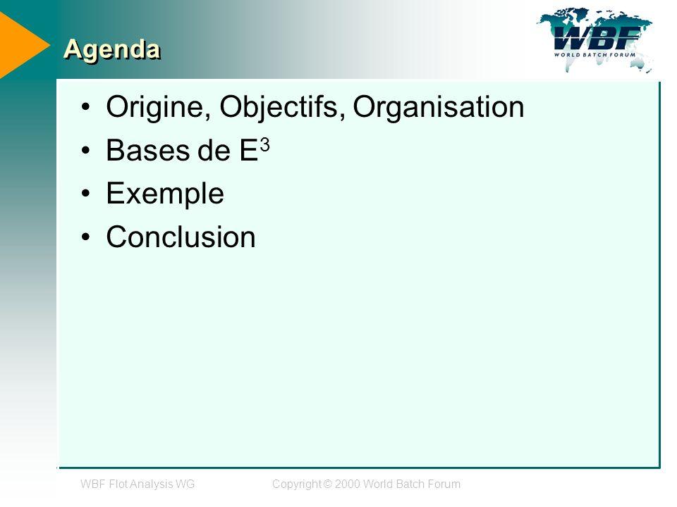WBF Flot Analysis WGCopyright © 2000 World Batch Forum Agenda Origine, Objectifs, Organisation Bases de E 3 Exemple Conclusion