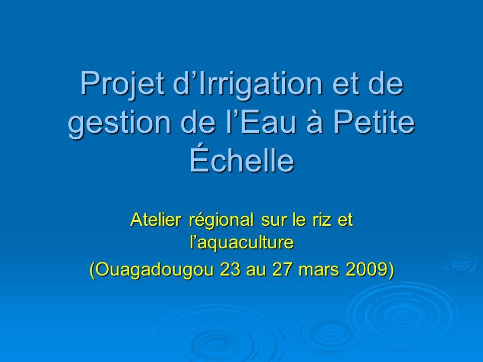 Introduction Le Fonds International de Développement Agricole et le Burkina ont conclu le 30 janvier 2008 à Rome, un accord, constitué du prêt et du don suivants, pour le financement partiel du Projet dIrrigation et de Gestion de lEau à Petite Echelle (PIGEPE) : Le Fonds International de Développement Agricole et le Burkina ont conclu le 30 janvier 2008 à Rome, un accord, constitué du prêt et du don suivants, pour le financement partiel du Projet dIrrigation et de Gestion de lEau à Petite Echelle (PIGEPE) : Prêt FIDA dun montant de 6 950 000 DTS, soit 5 574 millions de Francs CFA.