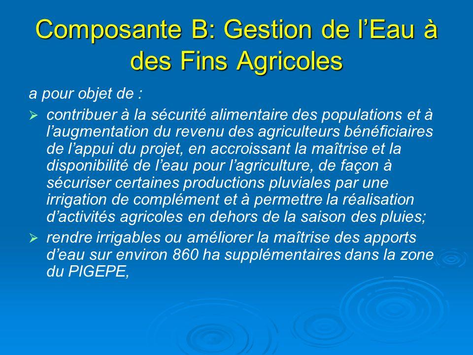 Composante B: Gestion de lEau à des Fins Agricoles a pour objet de : contribuer à la sécurité alimentaire des populations et à laugmentation du revenu