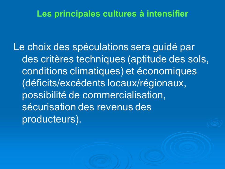 Les principales cultures à intensifier Le choix des spéculations sera guidé par des critères techniques (aptitude des sols, conditions climatiques) et