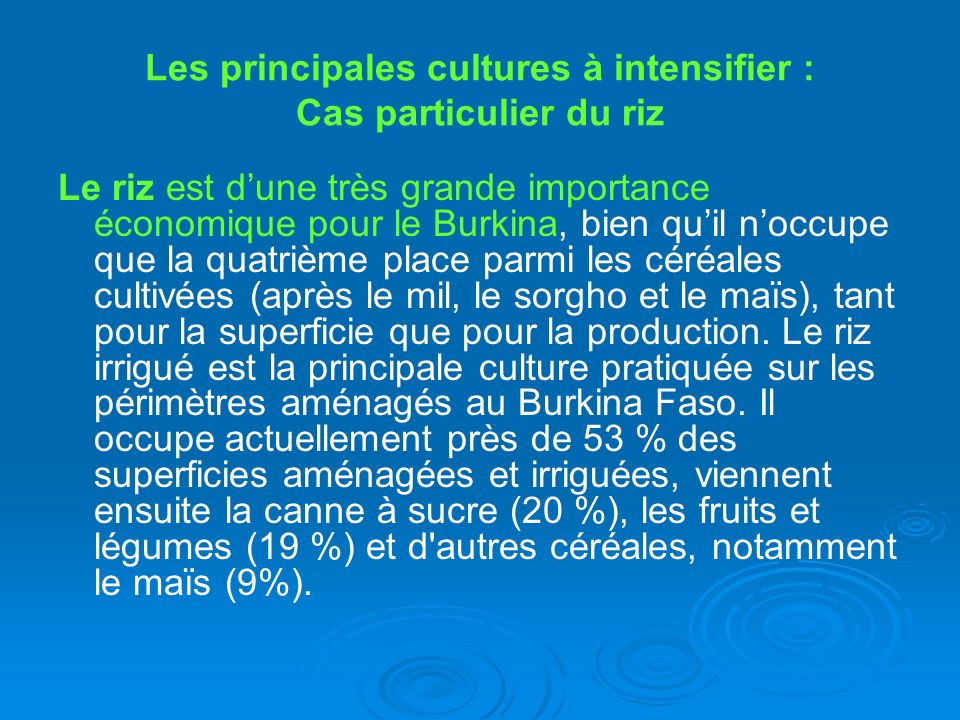Les principales cultures à intensifier : Cas particulier du riz Le riz est dune très grande importance économique pour le Burkina, bien quil noccupe q