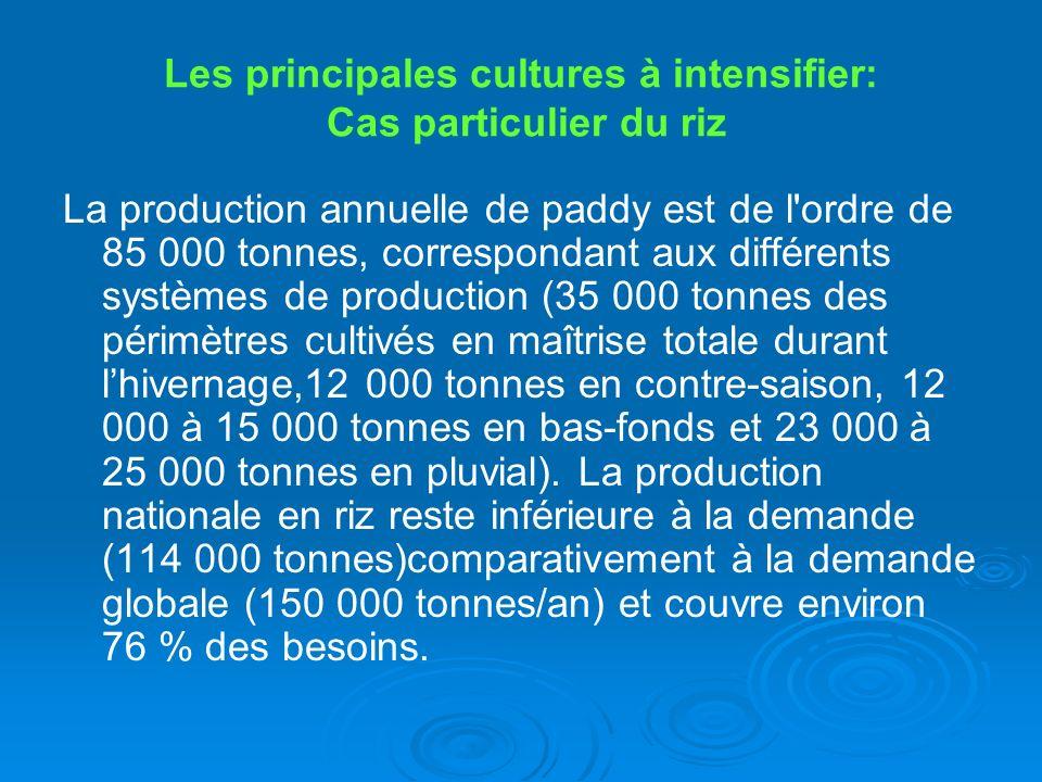 Les principales cultures à intensifier: Cas particulier du riz La production annuelle de paddy est de l'ordre de 85 000 tonnes, correspondant aux diff