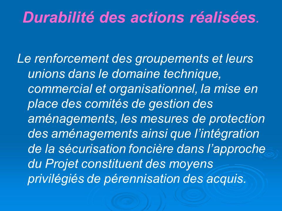 Durabilité des actions réalisées. Le renforcement des groupements et leurs unions dans le domaine technique, commercial et organisationnel, la mise en