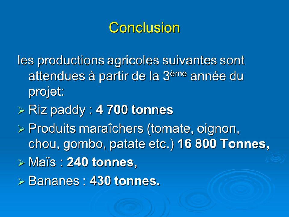 Conclusion les productions agricoles suivantes sont attendues à partir de la 3 ème année du projet: Riz paddy : 4 700 tonnes Riz paddy : 4 700 tonnes