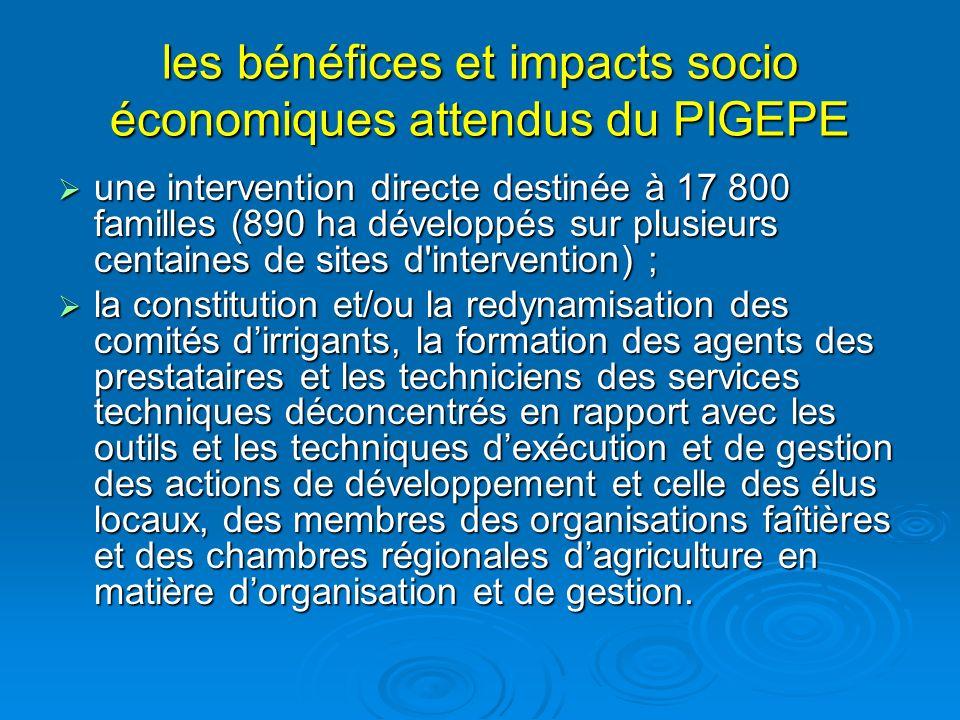 les bénéfices et impacts socio économiques attendus du PIGEPE une intervention directe destinée à 17 800 familles (890 ha développés sur plusieurs cen