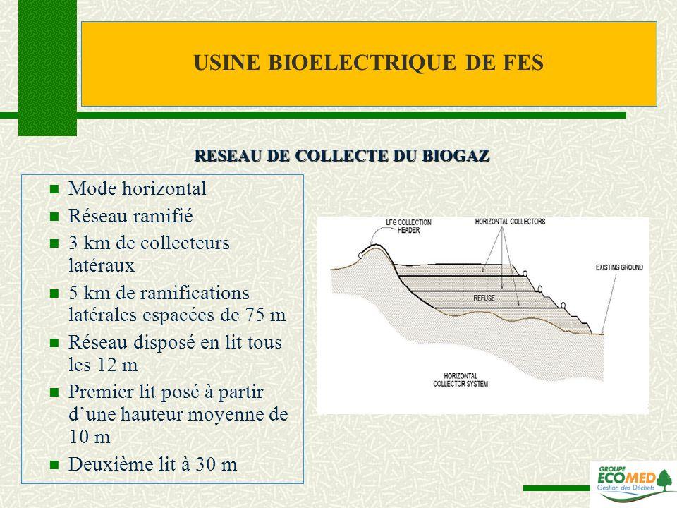 Mode horizontal Réseau ramifié 3 km de collecteurs latéraux 5 km de ramifications latérales espacées de 75 m Réseau disposé en lit tous les 12 m Premi