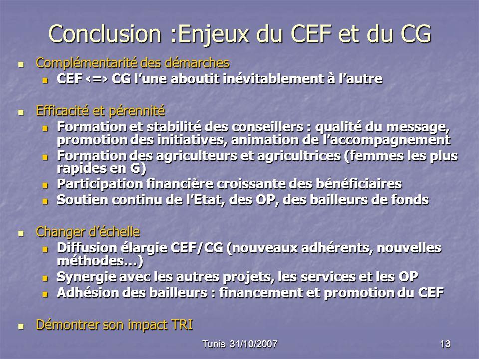 Tunis 31/10/200713 Conclusion :Enjeux du CEF et du CG Complémentarité des démarches Complémentarité des démarches CEF = CG lune aboutit inévitablement