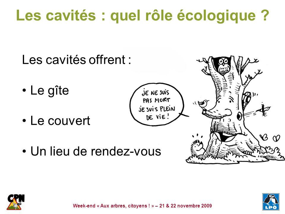 Week-end « Aux arbres, citoyens ! » – 21 & 22 novembre 2009 Les cavités : quel rôle écologique ? Les cavités offrent : Le gîte Le couvert Un lieu de r