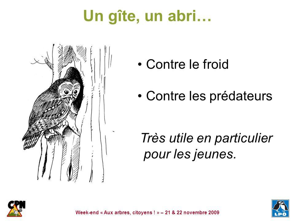 Week-end « Aux arbres, citoyens ! » – 21 & 22 novembre 2009 Un gîte, un abri… Contre le froid Contre les prédateurs Très utile en particulier pour les