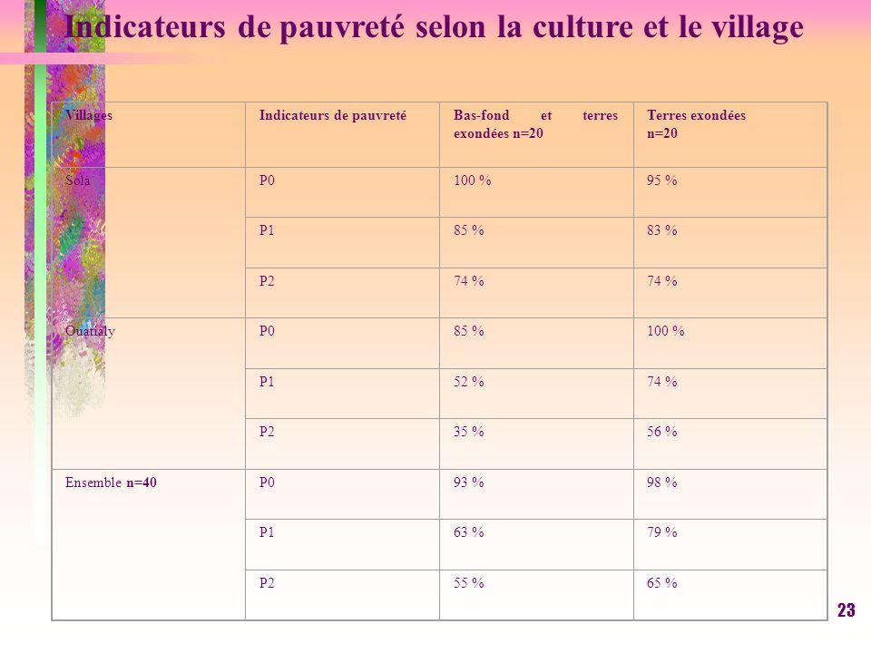 22 INDICATEURS DE PAUVRETE (suite et fin) Indice de sévérité de la pauvreté (P2) >1. Il donne un poids proportionnellement plus élevé aux déficits les