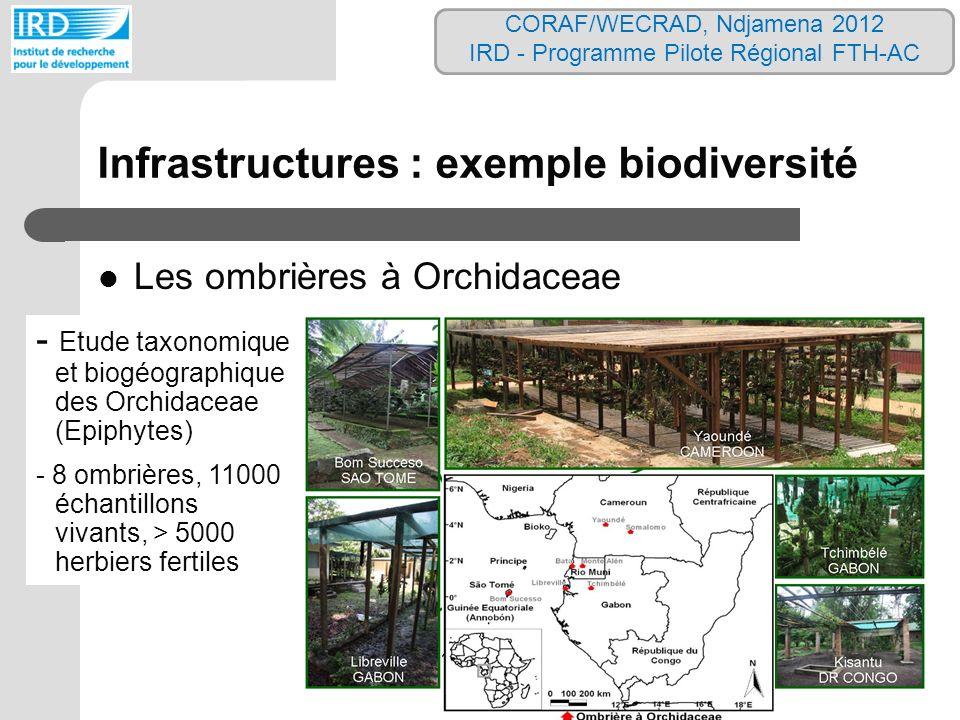 Infrastructures : exemple biodiversité Les ombrières à Orchidaceae - Etude taxonomique et biogéographique des Orchidaceae (Epiphytes) - 8 ombrières, 1