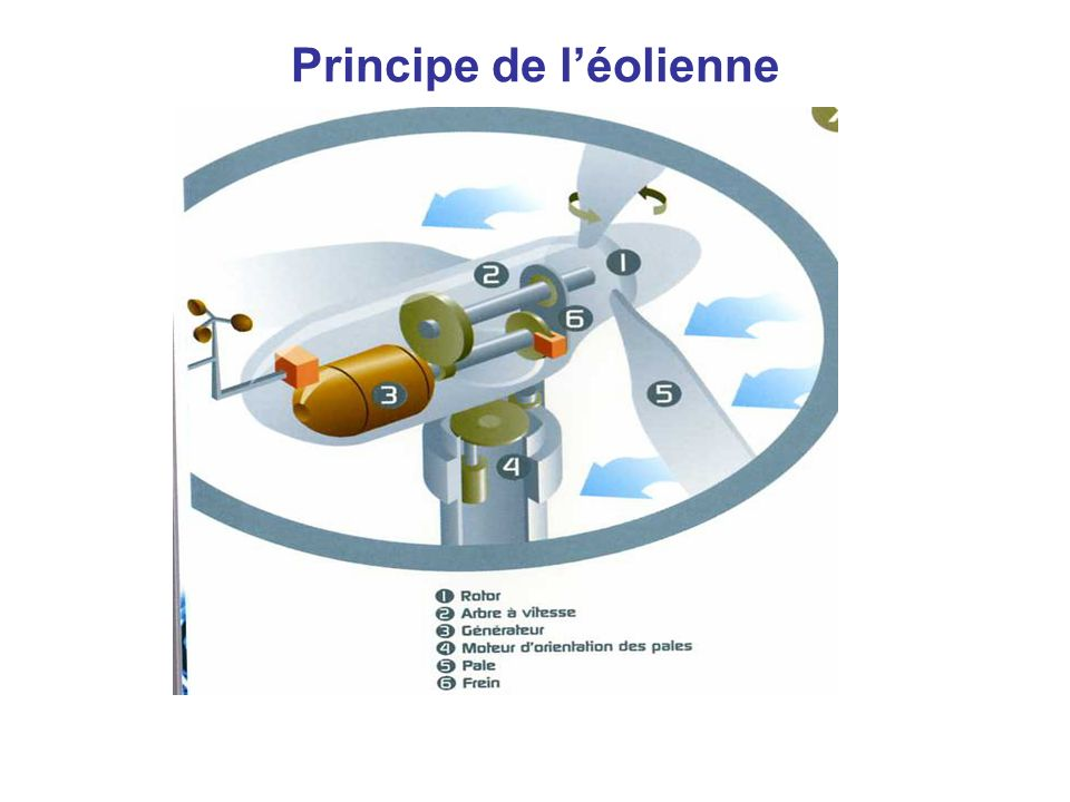 Principe de léolienne