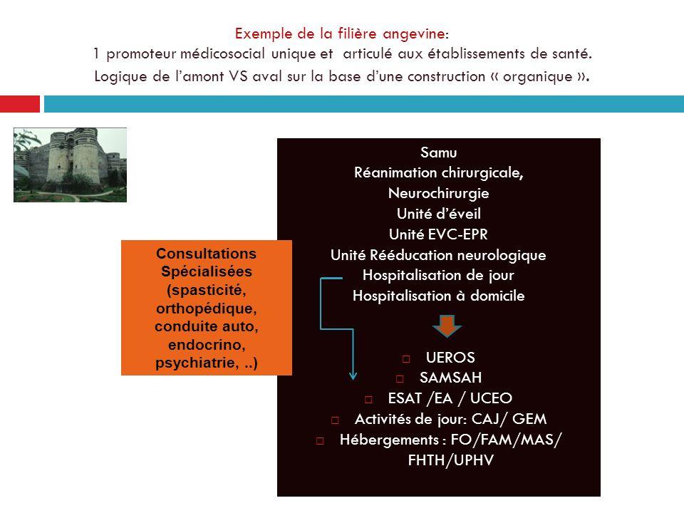 Exemple de la filière angevine: 1 promoteur médicosocial unique et articulé aux établissements de santé. Logique de lamont VS aval sur la base dune co