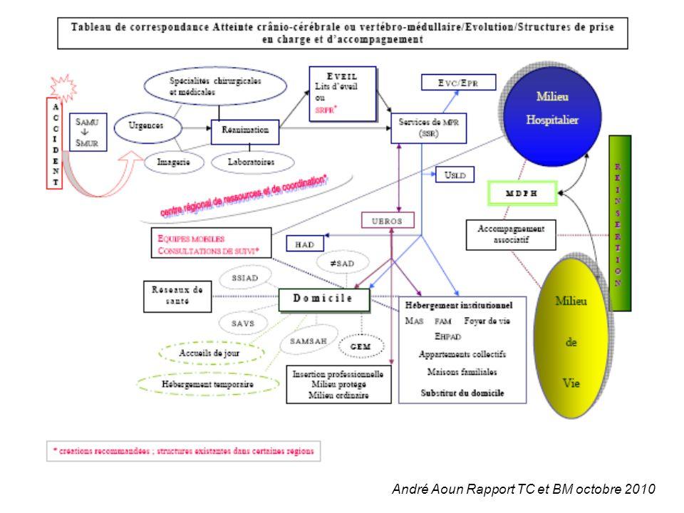 André Aoun Rapport TC et BM octobre 2010