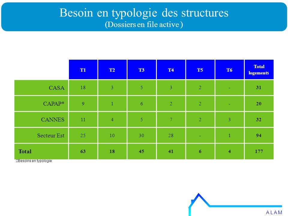 Besoins en typologie Besoin en typologie des structures (Dossiers en file active ) A L A M T1T2T3T4T5T6 Total logement s CASA 183532-31 CAPAP* 91622-20 CANNES 114572332 Secteur Est 25103028-194 Total 6318454164177