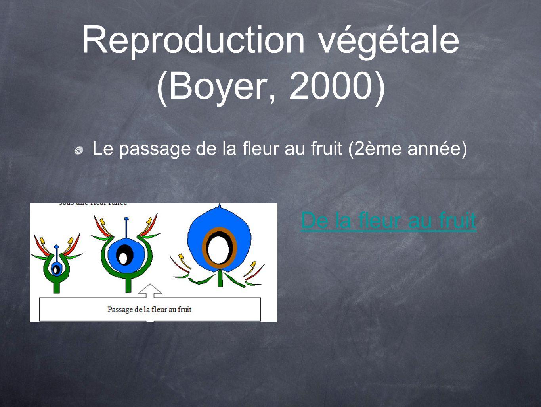 Reproduction végétale (Boyer, 2000) Le passage de la fleur au fruit (2ème année) De la fleur au fruit
