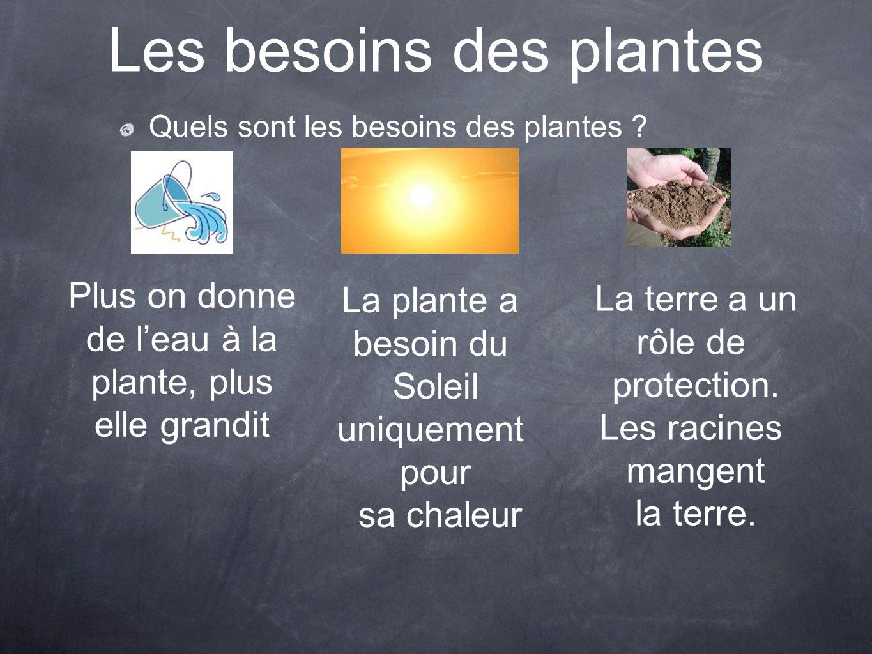 Les besoins des plantes Quels sont les besoins des plantes ? Plus on donne de leau à la plante, plus elle grandit La plante a besoin du Soleil uniquem