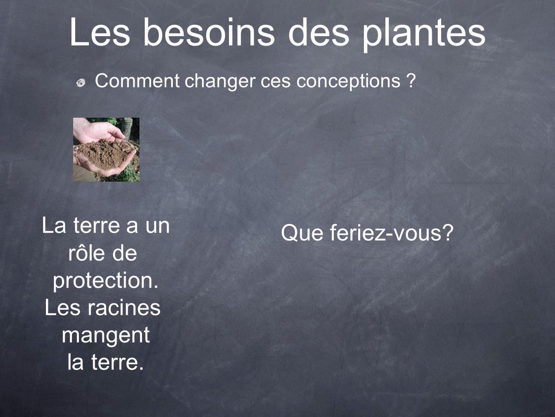 Les besoins des plantes Comment changer ces conceptions ? La terre a un rôle de protection. Les racines mangent la terre. Que feriez-vous?