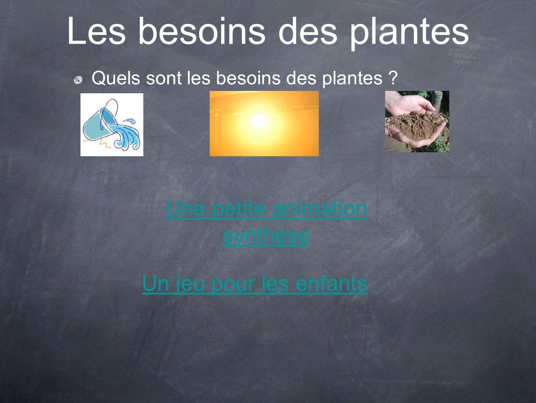 Les besoins des plantes Quels sont les besoins des plantes ? Un jeu pour les enfants Une petite animation synthèse