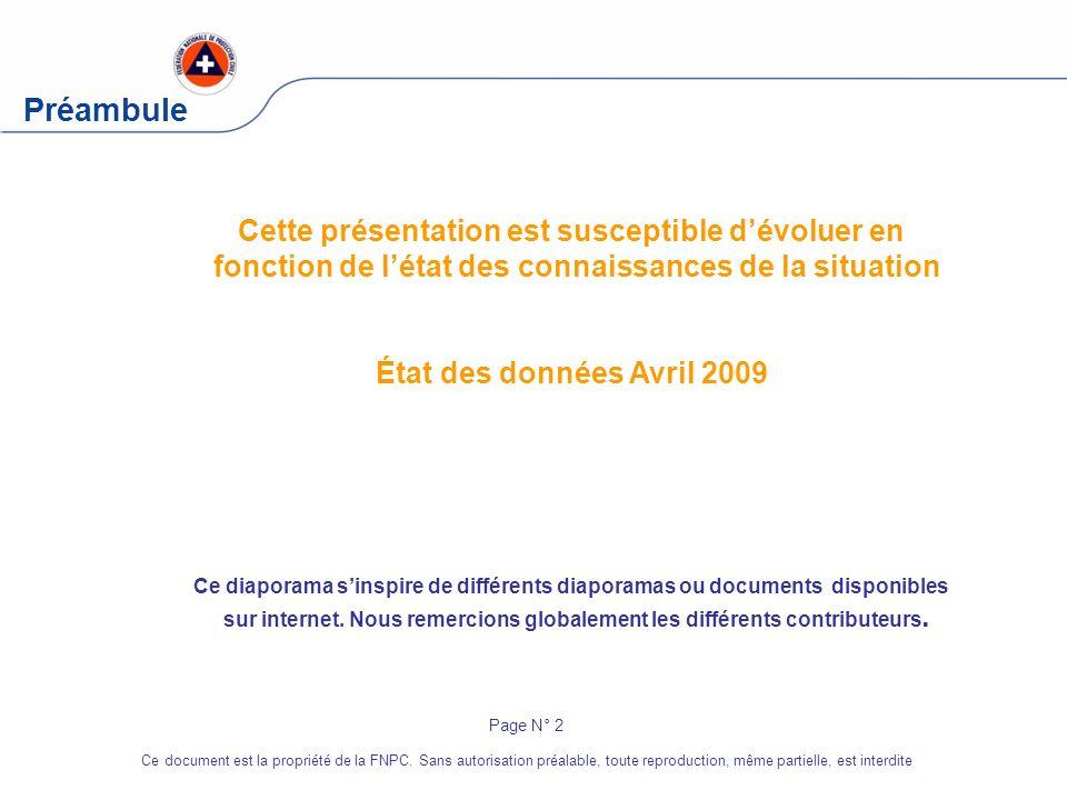 Préambule Cette présentation est susceptible dévoluer en fonction de létat des connaissances de la situation État des données Avril 2009 Page N° 2 Ce