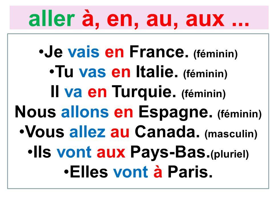 Je vais en France. (féminin) Tu vas en Italie. (féminin) Il va en Turquie. (féminin) Nous allons en Espagne. (féminin) Vous allez au Canada. (masculin