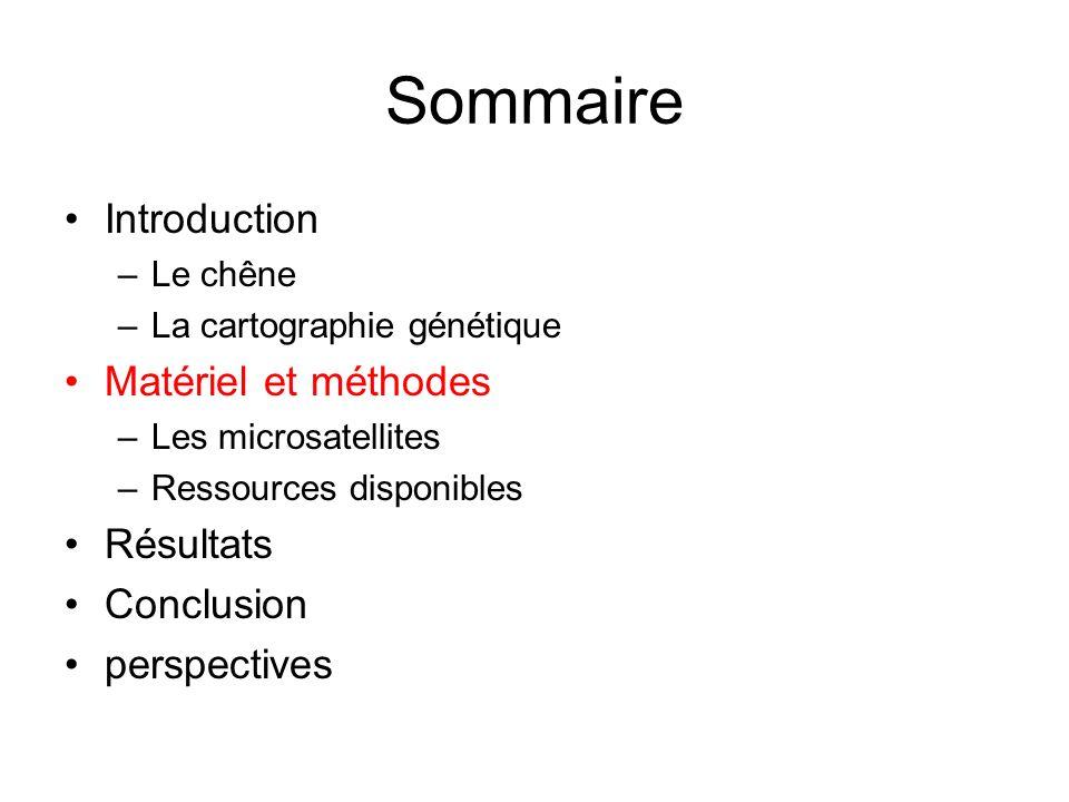 Sommaire Introduction –Le chêne –La cartographie génétique Matériel et méthodes –Les microsatellites –Ressources disponibles Résultats Conclusion pers