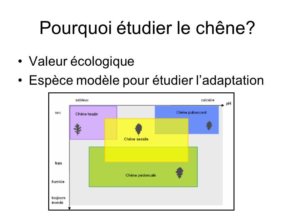 Valeur écologique Espèce modèle pour étudier ladaptation