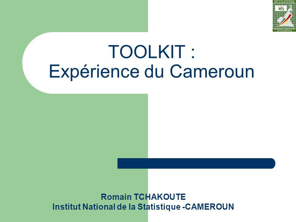 Romain TCHAKOUTE Institut National de la Statistique -CAMEROUN TOOLKIT : Expérience du Cameroun