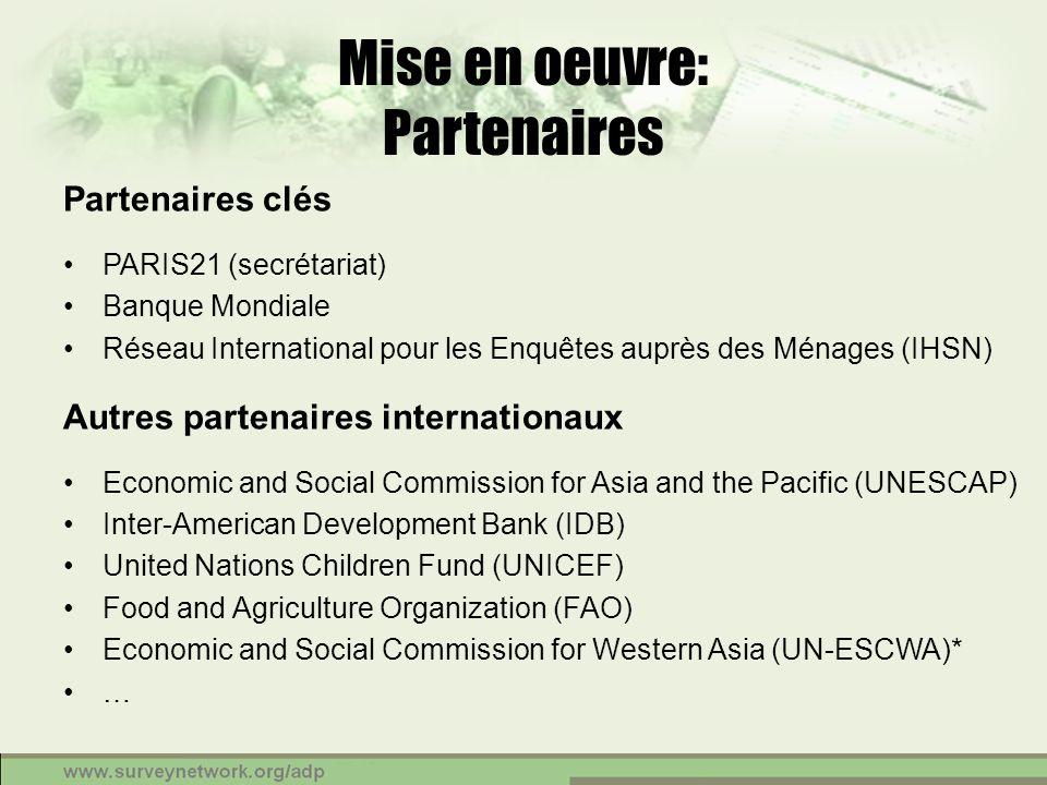 Mise en oeuvre: Partenaires Partenaires clés PARIS21 (secrétariat) Banque Mondiale Réseau International pour les Enquêtes auprès des Ménages (IHSN) Au