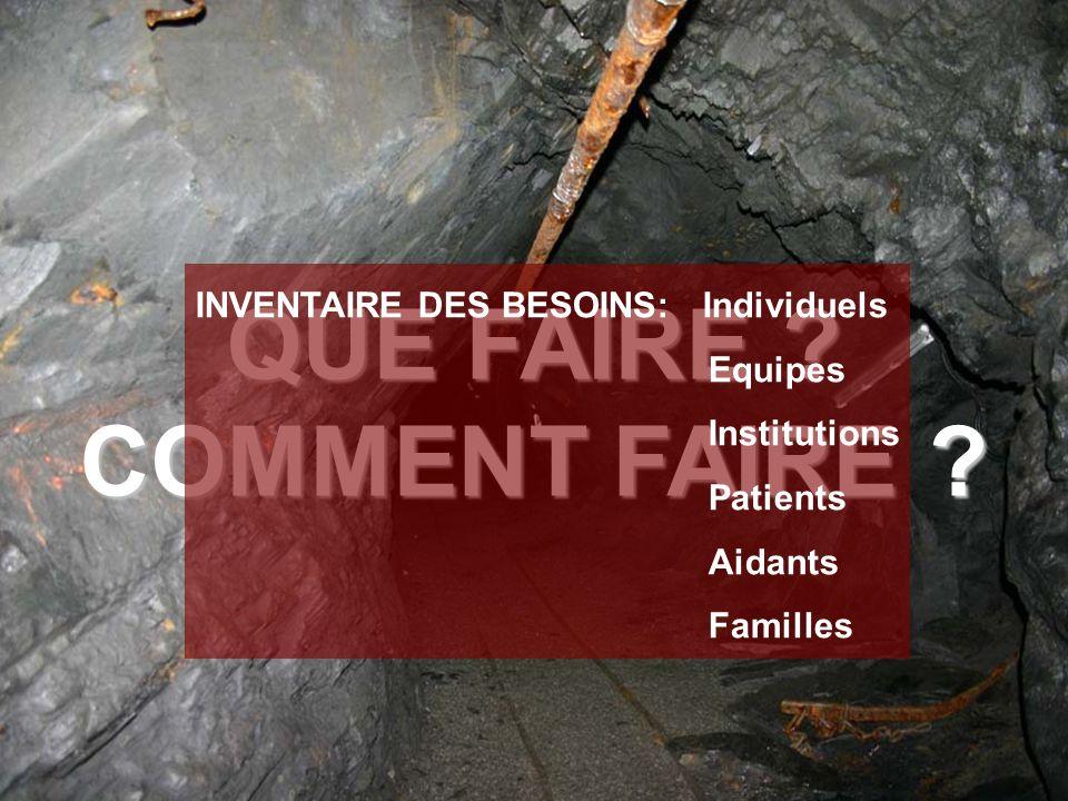 QUE FAIRE ? COMMENT FAIRE ? INVENTAIRE DES BESOINS: Individuels Equipes Institutions Patients Aidants Familles