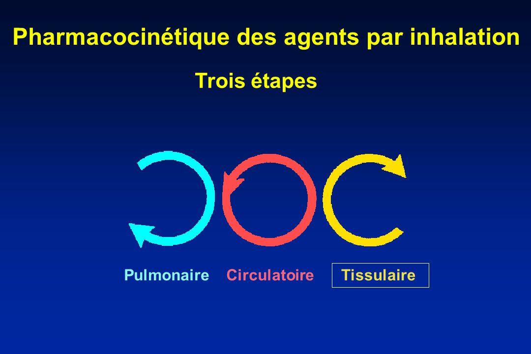Pharmacocinétique des agents par inhalation PulmonaireCirculatoire Tissulaire Trois étapes