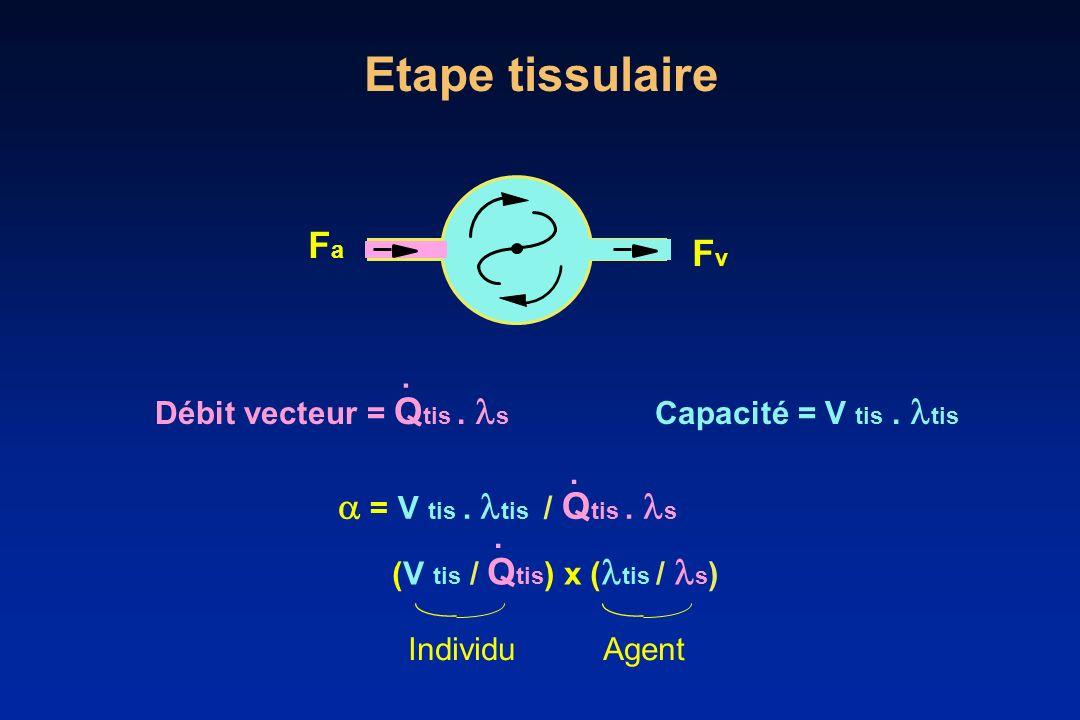 Etape tissulaire J Débit vecteur = Q tis. s Capacité = V tis. tis. = V tis. tis / Q tis. s. FaFa FvFv (V tis / Q tis ) x ( tis / s ). IndividuAgent