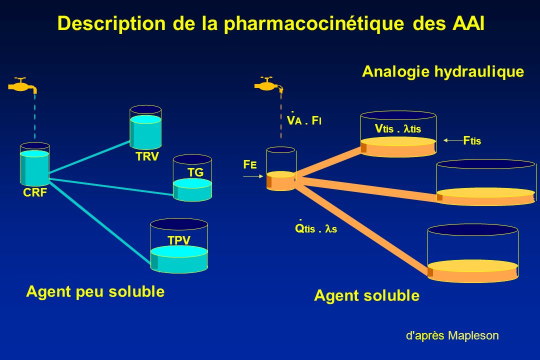 Description de la pharmacocinétique des AAI Analogie hydraulique d'après Mapleson Agent peu soluble CRF TRV TG TPV Agent soluble V A. F I Q tis. s.. V