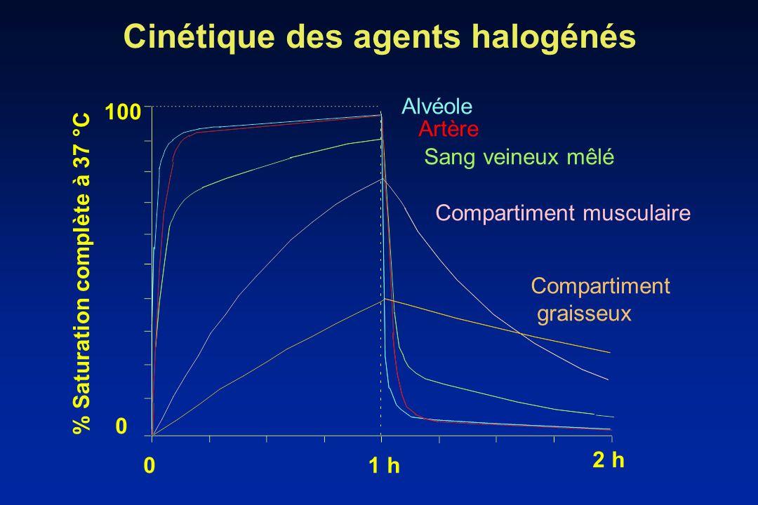 % Saturation complète à 37 °C 01 h 2 h 0 100 Alvéole Artère Sang veineux mêlé Compartiment musculaire Compartiment graisseux Cinétique des agents halo