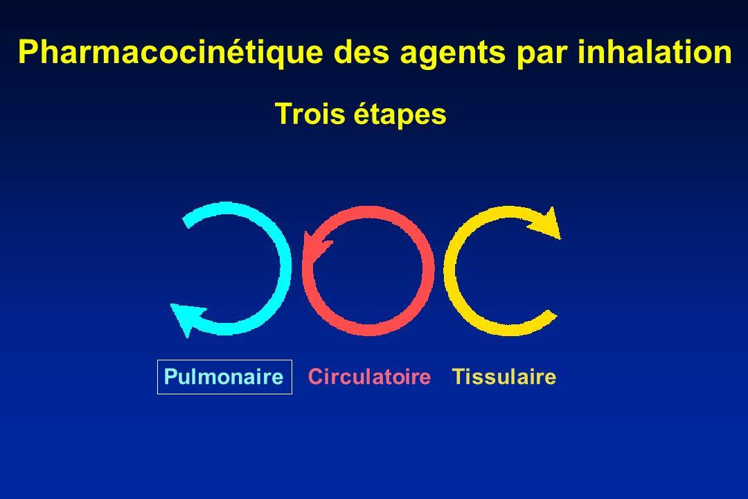 Pharmacocinétique des agents par inhalation Pulmonaire CirculatoireTissulaire Trois étapes