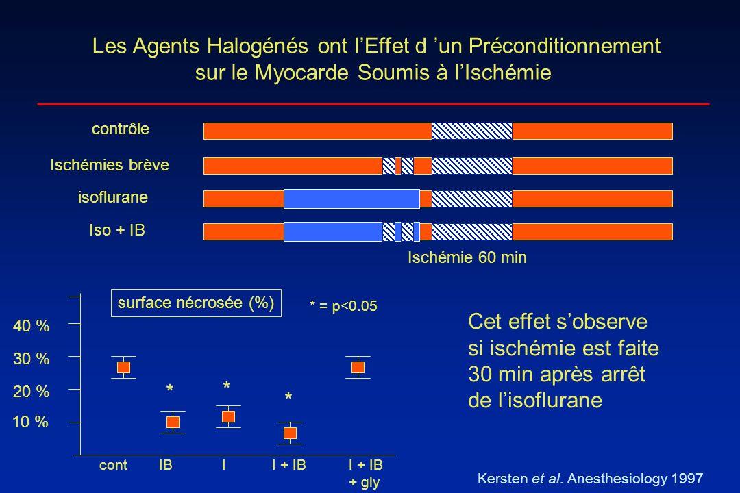 Les Agents Halogénés ont lEffet d un Préconditionnement sur le Myocarde Soumis à lIschémie Kersten et al. Anesthesiology 1997 Ischémie 60 min contrôle
